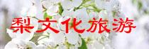 十九届梨花节